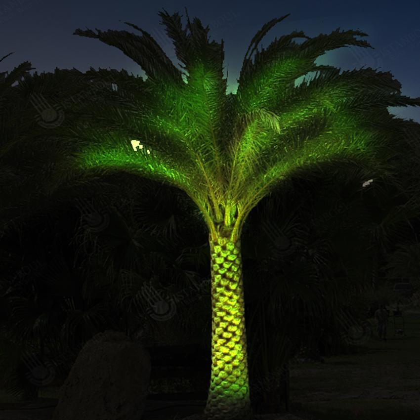 Palm Tree Lights Project